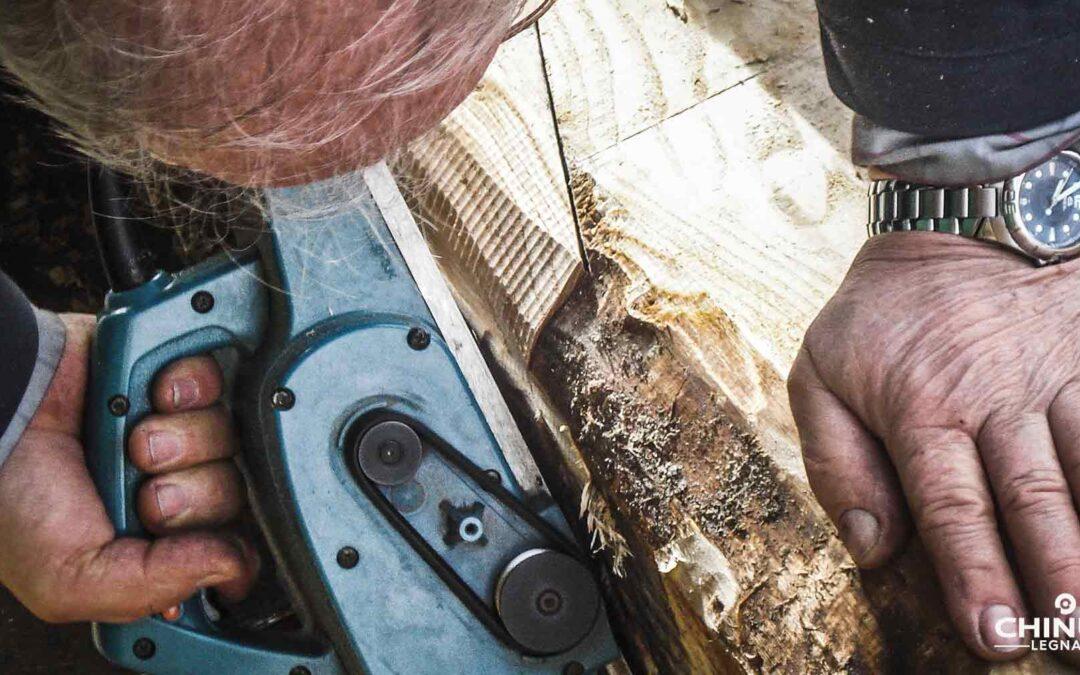 Legno essiccato e legno verde: differenze e caratteristiche